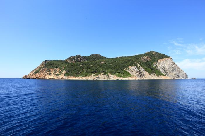 Zannone-isola-latina-87638