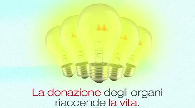 donazione-organi-lazio-latina-487622