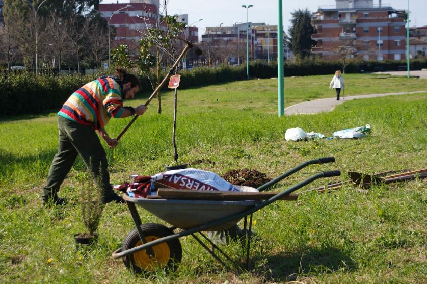 guerrilla-gardening-latina-437662342