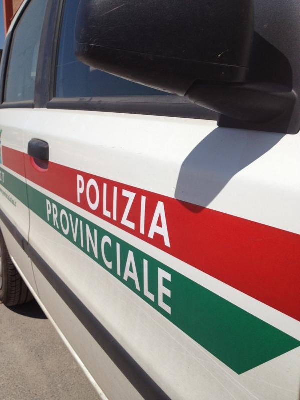 polizia provinciale-636746767