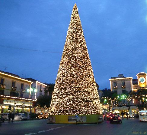 albero-di-natale-sorrento-latina24ore-4676713