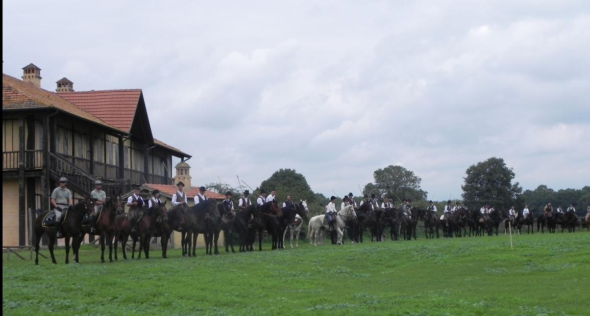 villa-fogliano-cavalli-manifestazione-latina-58936205