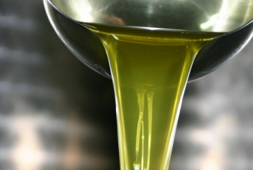 A Latina nasce l'olio Solea prodotto nelle terre confiscate alle mafie