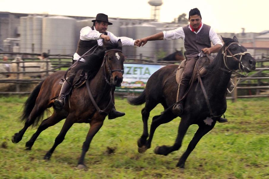 mostra-agricola-campoverde-latina24ore-68763