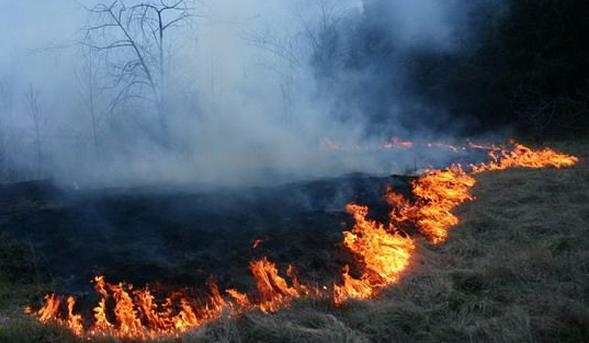 sterpaglie-fuoco-incendio-latina24ore-776300