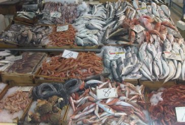 Sermoneta tenta il rilancio del mercato settimanale di Monticchio