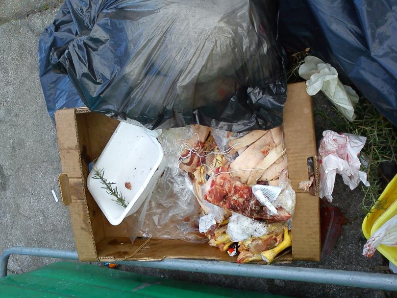 rifiuti-macelleria-latina-24ore