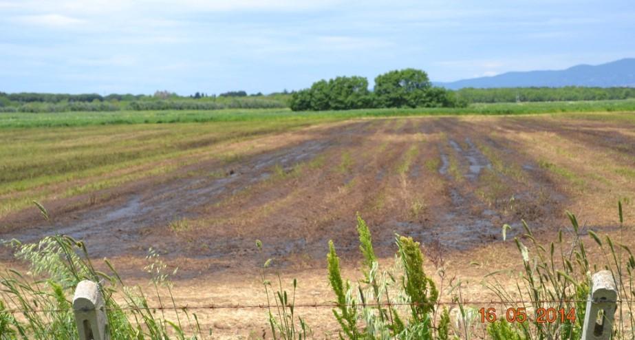 digestato-terreno-agricolo-latina
