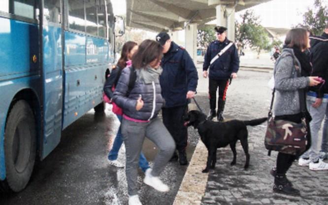 carabinieri- autolinee-latina