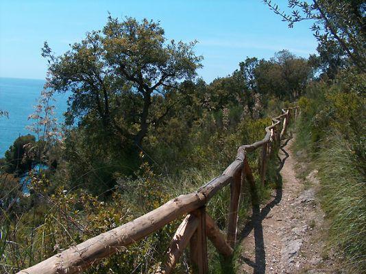 parco_di_gianola_sentiero