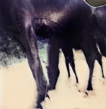 Arte-nomade-foto-mostra