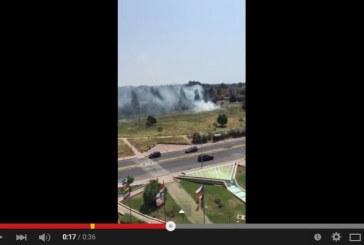 VIDEO Latina, incendio al Parco Santa Rita