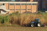 FOTO Finalmente il taglio dell'erba in Q4. Un lettore: Degrado mai visto prima