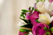 Comune di Latina, pubblicazioni di matrimonio