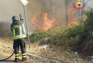 Vasto incendio a Borgo Piave: sul posto i vigili del fuoco di Latina ed Aprilia. Necessario l'utilizzo di un elicottero per le operazioni di spegnimento