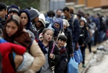 VIDEO Il sindaco di Ventotene: Mandate i migranti sulla nostra isola