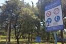 La proposta: Giardino della Pace nel parco Mussolini per celebrare la Liberazione di Littoria