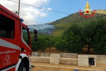 VIDEO Fondi, vasto incendio nel parco degli Aurunci: in azione canadair ed elicotteri