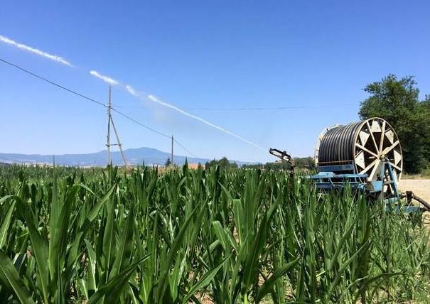 Agricoltura in ginocchio senza pioggia addio ai raccolti for Sistema irrigazione