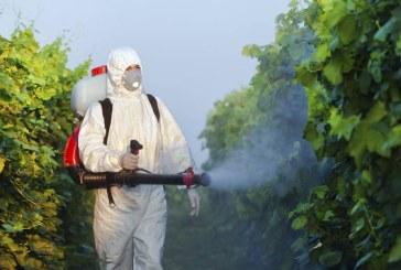 Nuovo caso di Chikungunya a Latina, disinfestazione all'Acciarella