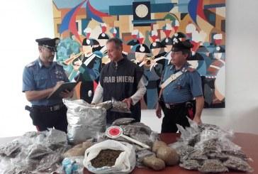 FOTO Arrestato dai carabinieri con 25 chili di marijuana