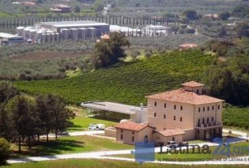 Vino Castore Cincinnato scelto per una serata dedicata alle regioni colpite dal terremoto