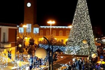 FOTO L'enorme albero di Natale mette tutti d'accordo e la foto diventa virale