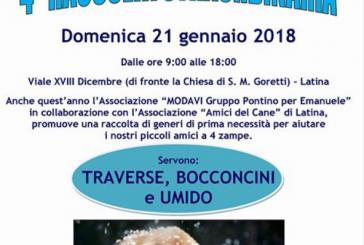 Latina si mobilita: domenica 21 gennaio raccolta straordinaria per aiutare gli amici a quattro zampe