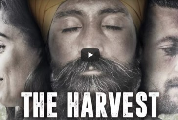 VIDEO The Harvest al cinema Corso di Latina con regista e attori