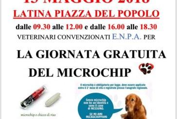 Latina, in piazza del Popolo microchip gratuiti per tutti i cani