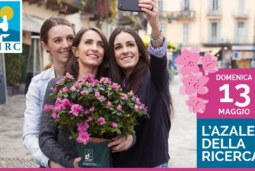 Domenica 13 maggio torna l'Azalea della Ricerca in due piazze a Latina