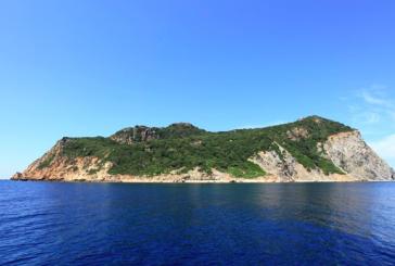 """""""The Big Five"""", il Parco Nazionale del Circeo a favore della conservazione della biodiversità nell'isola di Zannone"""