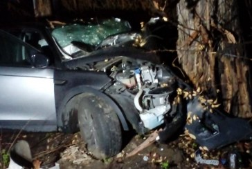 Auto contro un albero, feriti 5 giovani di Latina
