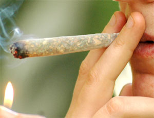 hashish_spinello_canna_marijuana1